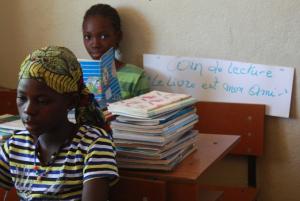 projecten ondersteund door fifala mali